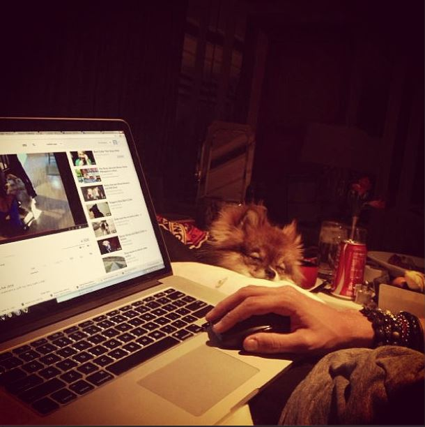 instagram_Avicii