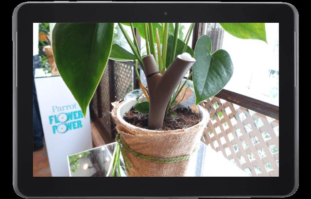 Galería: Parrot Power Flower, un jardinero inteligente