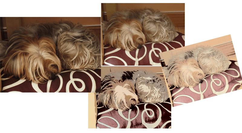 Ejemplo de distintos filtros en una misma imagen