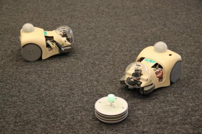 Robots ratones: Las nuevas herramientas para la comprensión de la evolución
