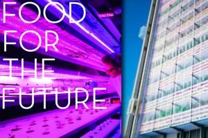 cityfarm-mit-food-for-the-future