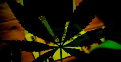 Este mercado online de drogas ha ido a cierre temporal (y no por deudas con la justicia)