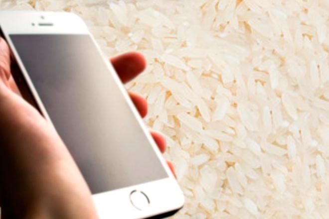 """El arroz """"reviviría"""" a tu móvil empapado (pero podría ser de forma temporal)"""