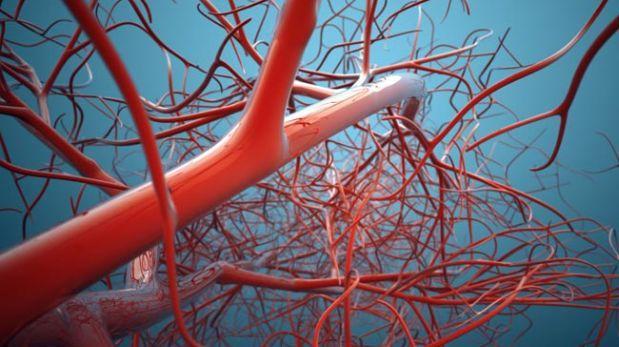 Crean vasos sanguíneos con impresión 3D
