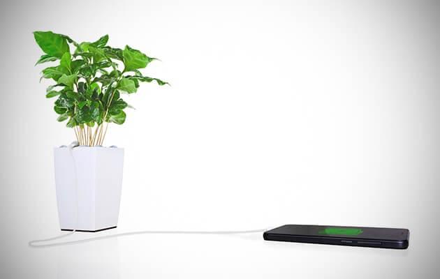Bioo Lite, la maceta que transmite energía
