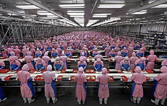 Foxconn reemplazará trabajadores por robots