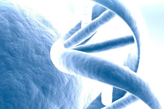 Ordenador con codigo genético humano