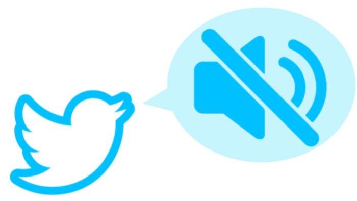 Twitter está ocultando cuentas, descubre por qué