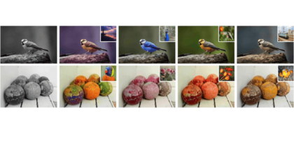 software para colorear fotos