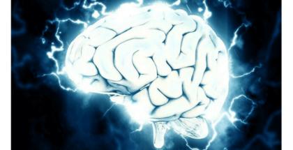 En una universidad de Johannesburgo lograron conectar un cerebro a Internet