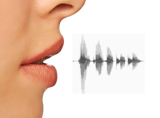 Seguridad biométrica, reconocimiento de voz