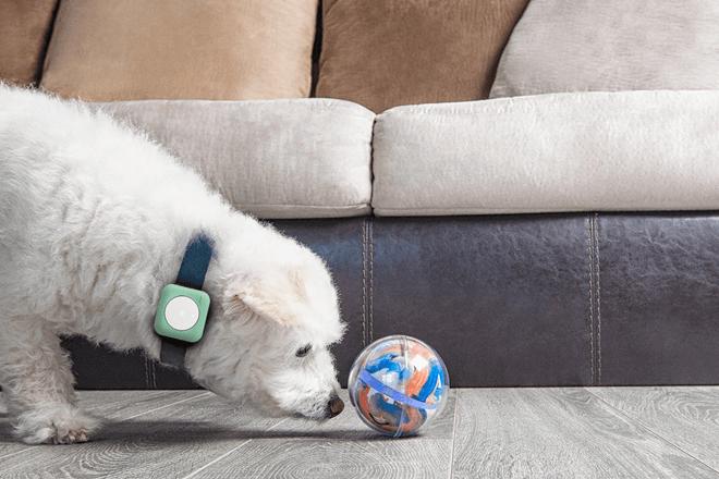 Geeksme Universall: un ecosistema IoT que convierte cualquier objeto en inteligente