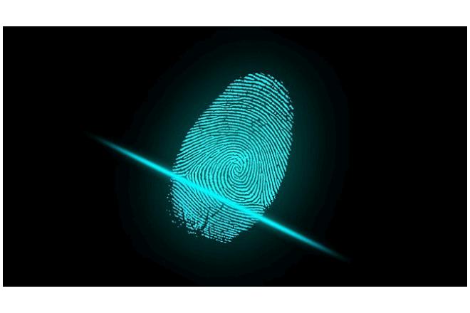 Deep Master Prints es la Inteligencia Artificial que crea huellas dactilares falsas