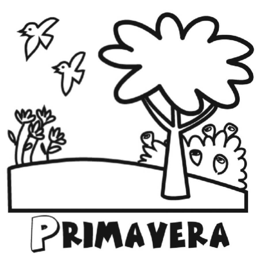 Dibujo Para Imprimir Y Colorear De Animales De Primavera Giztab