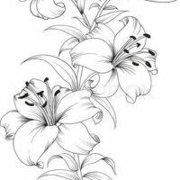 Flores Y Pajaros Para Imprimir Imagenes Y Dibujos Para Classycloudco