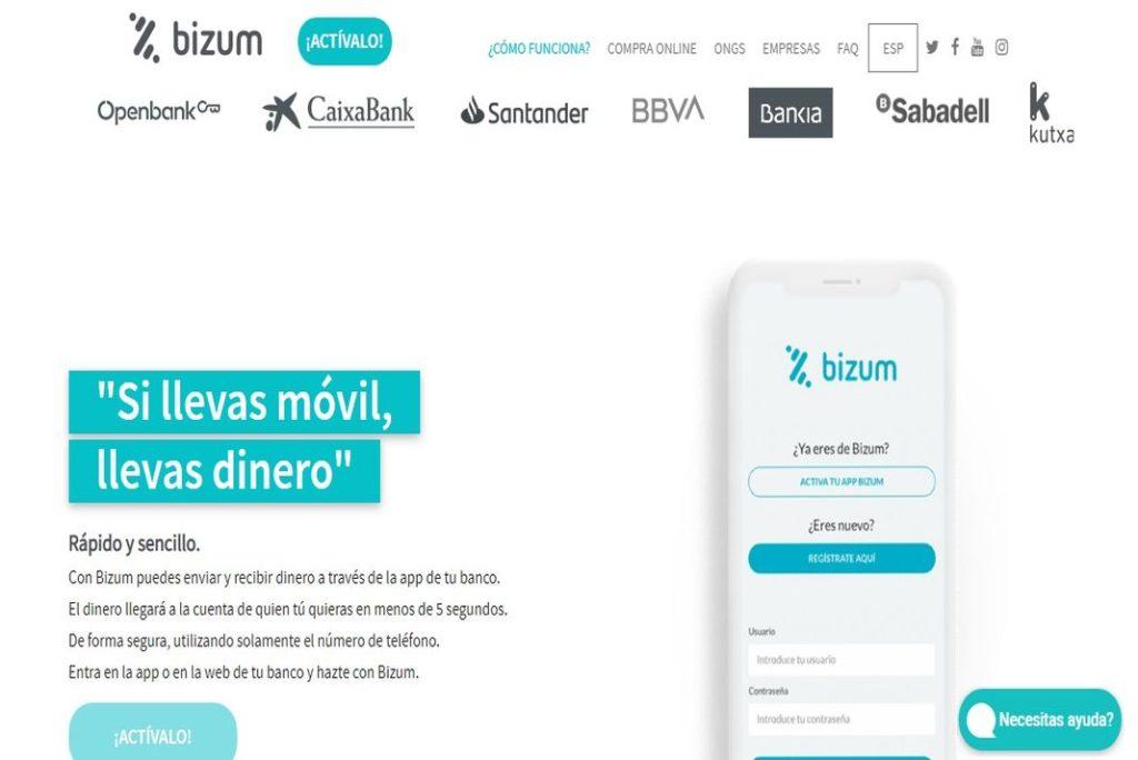 Pantallazo de la web de Bizum